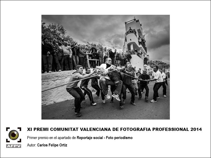 primer-premio-retrato-comunitat-valenciana-2014