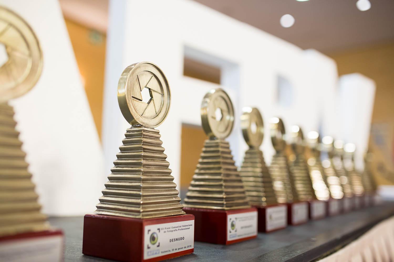 Nueva estatuilla del Premi Comunitat Valenciana de Fotografia Professional