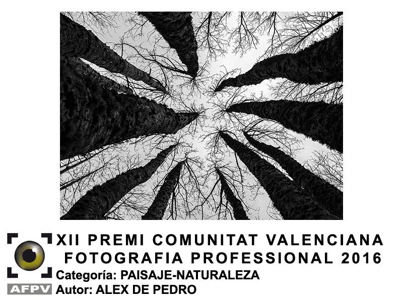 premi-cv-paisaje-naturaleza-alex-de-pedro-2016