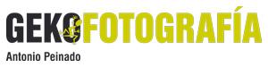 logo Geko fotografía