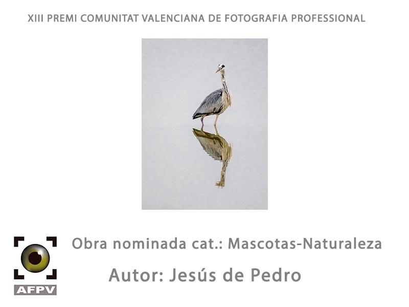 mascotas-naturaleza_002_jesus-de-pedro.jpg