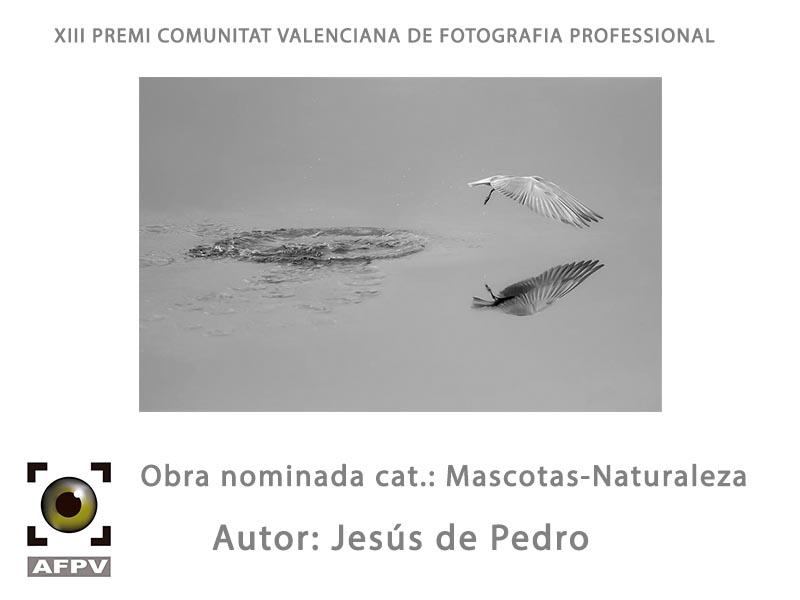 mascotas-naturaleza_005_jesus-de-pedro.jpg