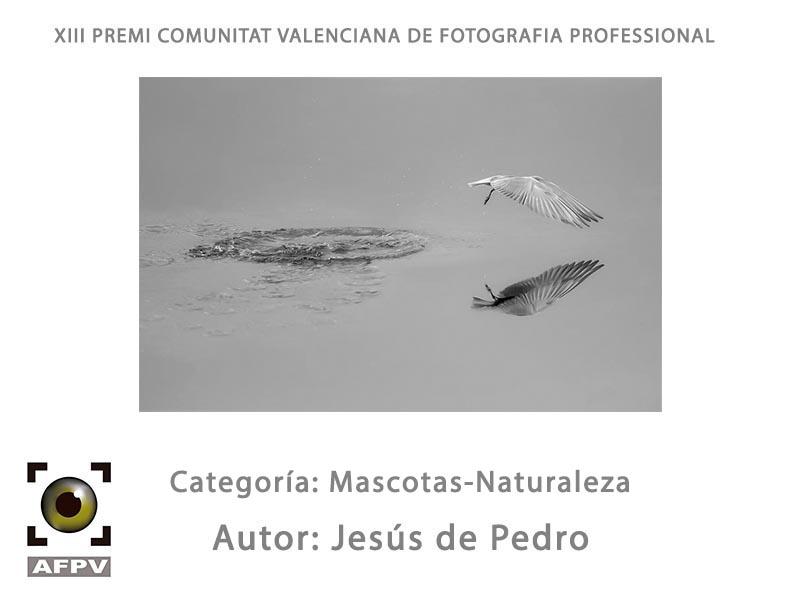 mascotas-naturaleza_005_jesus-de-pedro